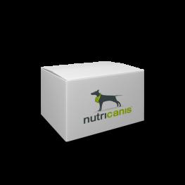 Hypoallergeen natvoer voor honden: 400g Kangoeroe + Zoete Aardappel